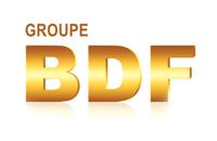 Дизайн фирменного стиля компании BDF