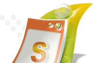 Создание логотипа сайта Scins