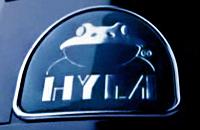 Создание логотипа компании Hyla