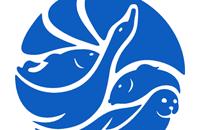 Дизайн логотипа минеральной воды Жемчужина Байкала