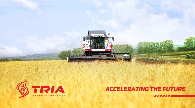разработка логотипа аграрной компании