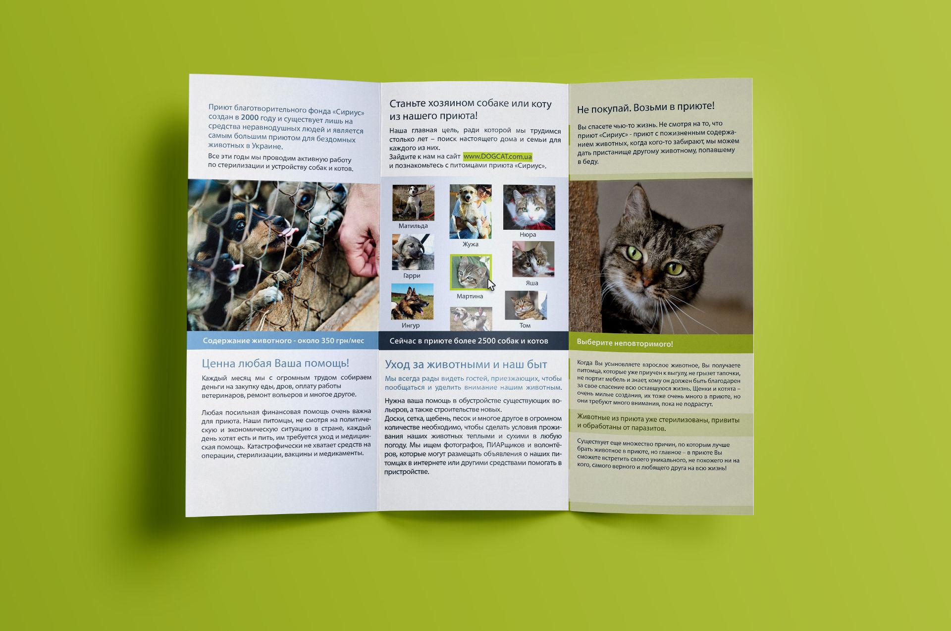 Дизайн листовки для приюта животных, Animal shelter flyer design