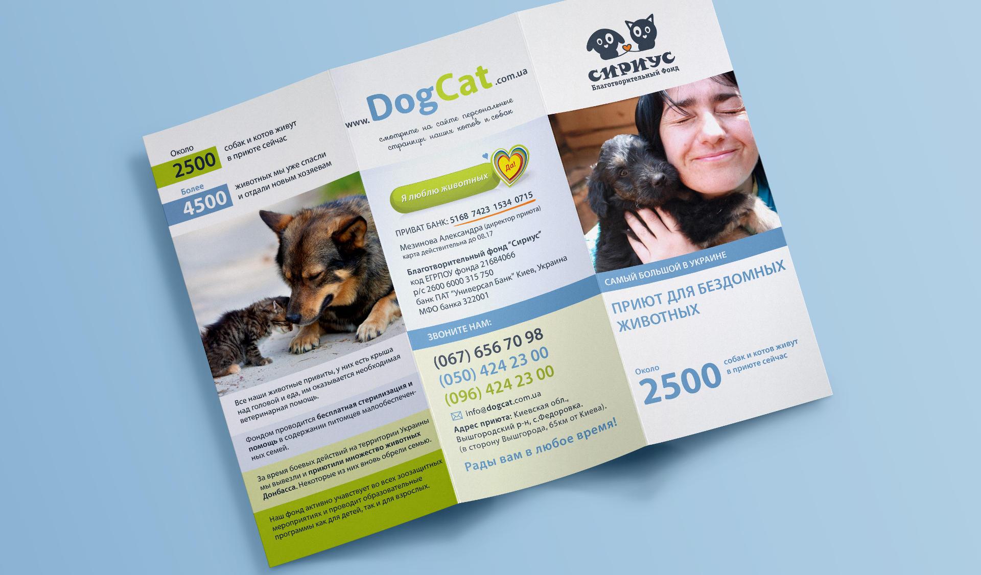 Разработка листовки для приюта домашних животных